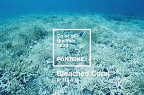 Главные цвета В интерьере-2020